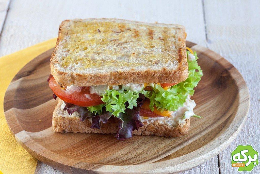 ساندویچ تن ماهی خوشمزه با قارچ و پنیر