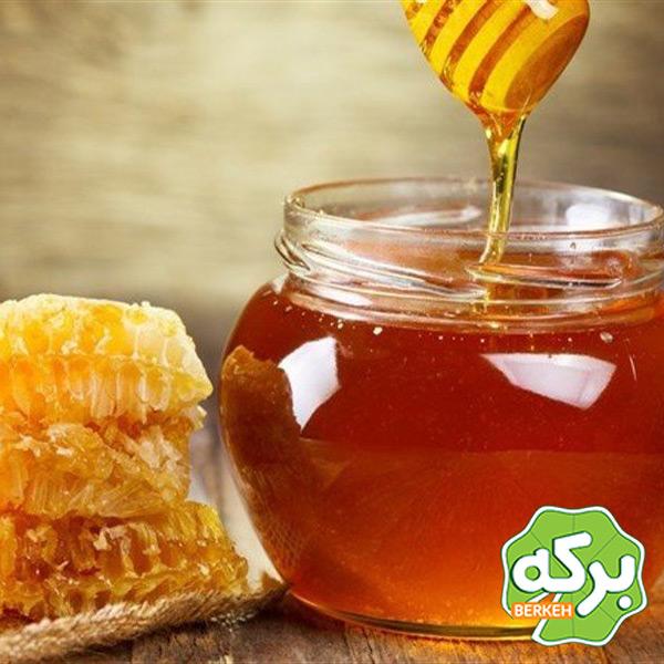 خواص عسل گون؛ خاصیتی که سلامتی شما را بیمه می کند