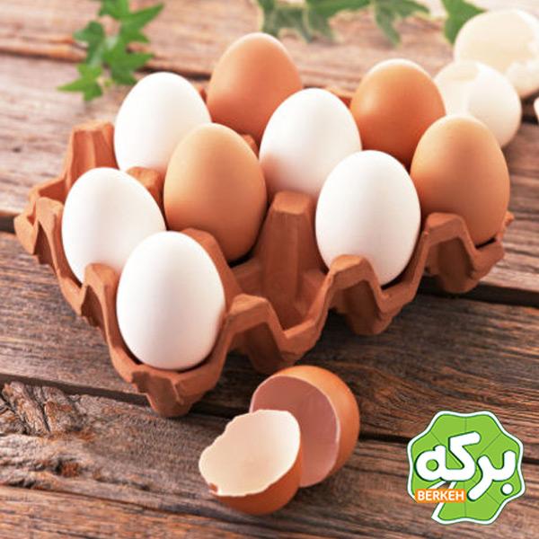 تخم مرغ ترک خورده